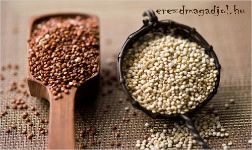 quinoa-futas