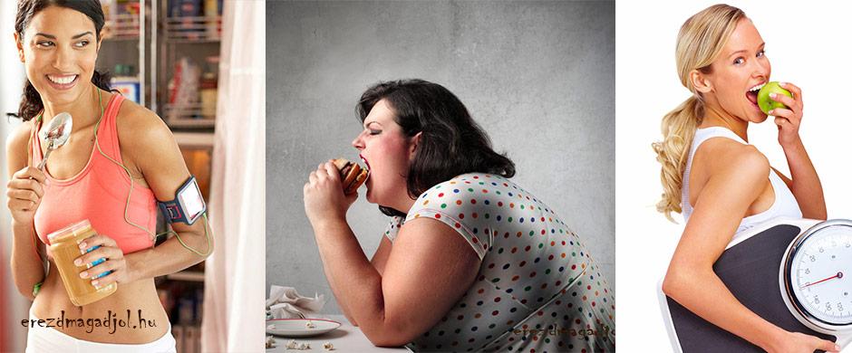 Fogyás és a zsír raktározás biológiája – lerántjuk a leplet