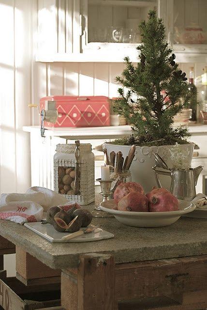 asztali-cserepes-fenyofa
