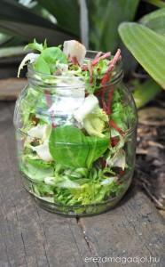 salata-tarolasa
