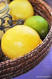 dietas-citrom-krem