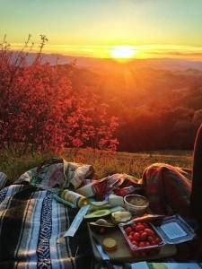 oszi-piknik