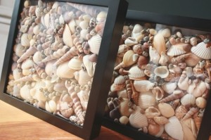 tengerpart-kagylok