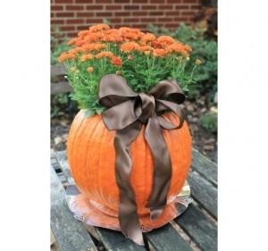 halloween-tok-dekoracio