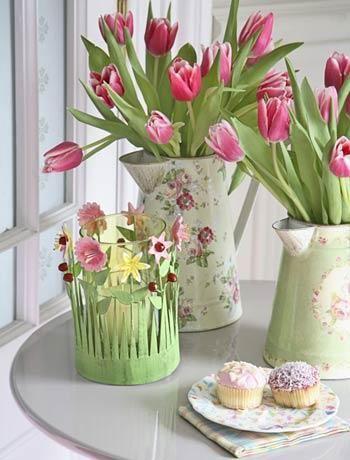 husveti-tulipan