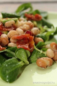 avokados-salata