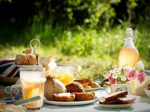 piknik-stilusosan