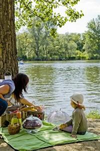 toparti-piknik
